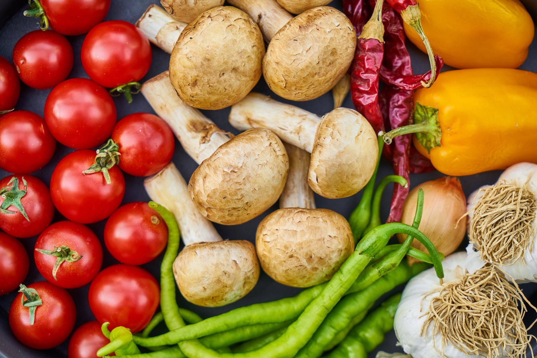 You are currently viewing Susquehanna County Food Council